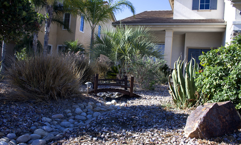 Homeowners warned about insurance implications of drought